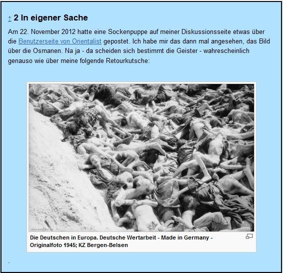 Instrumentalisierung der Millionen Toten des Judenmordes für interne Streitereien in der Wikipedia